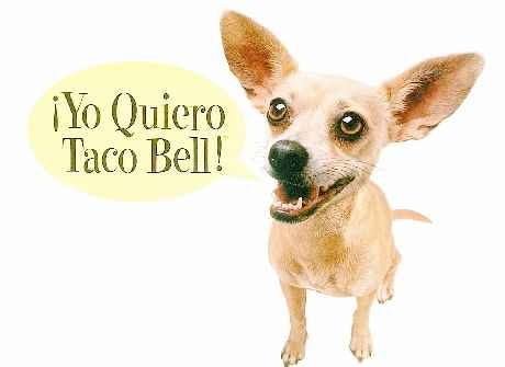 taco-bell-_dog-ad
