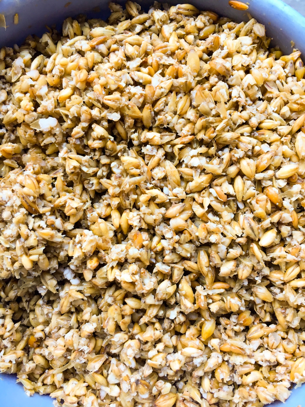 Wet Grain.jpg